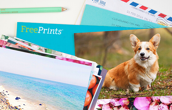 Get Free Photo Prints Freeprints App Uk For Iphone Android
